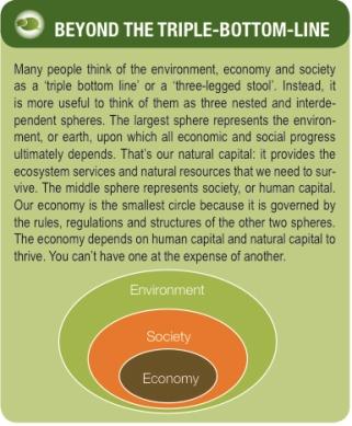 sustainability-nesting